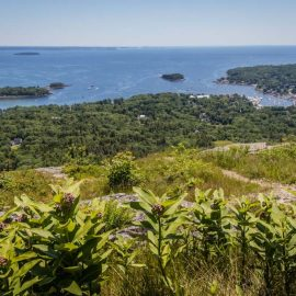 Overlooking Penobscot Bay from a hill