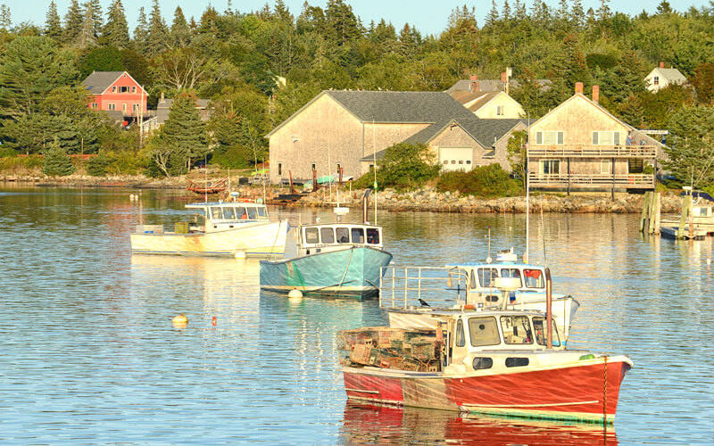 Maine harbor with colorful boats