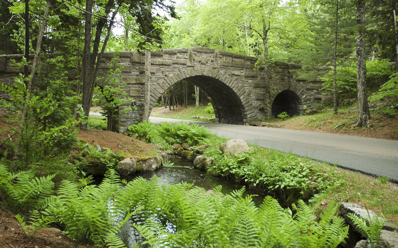 Carriage road going through forest at Acadia national park with a stone bridge