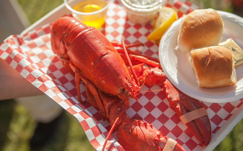 Classic Maine lobster dinner, corn and roll on red checkered paper