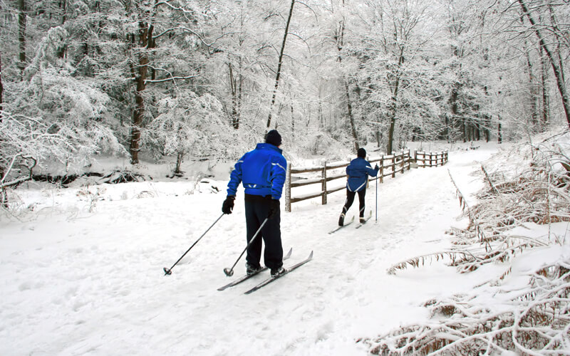 Two people cross country skiing at Acadia National Park