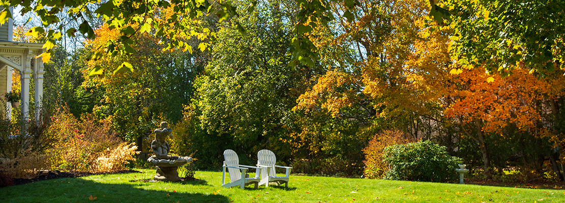 Beautiful view of fall leaves at our B&B