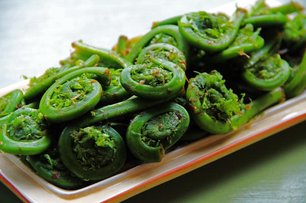 Best Maine Restaurants fiddleheads
