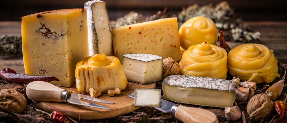 Midcoast Maine Cheese Trail Day Trip