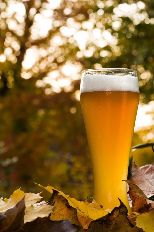 Fall in Maine craft beer